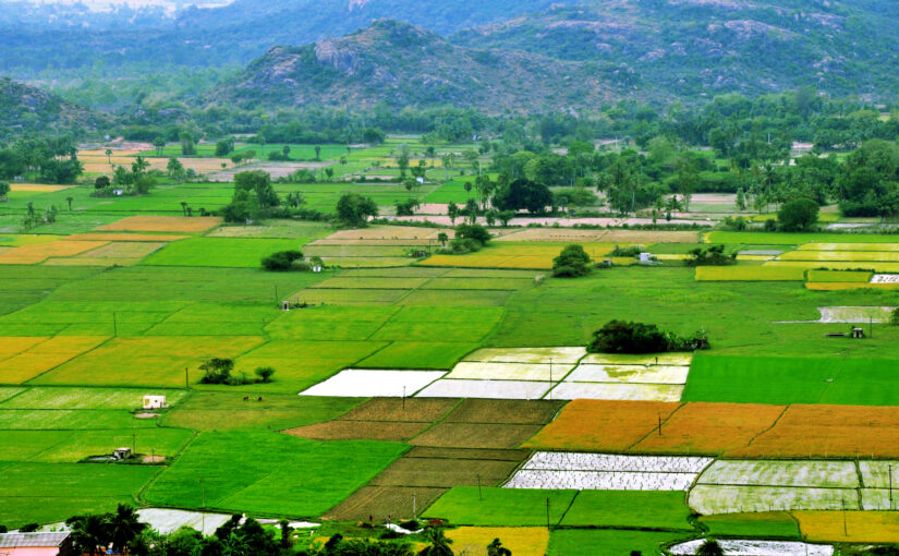 A talajjavítás szükségessége ma már nem kérdés