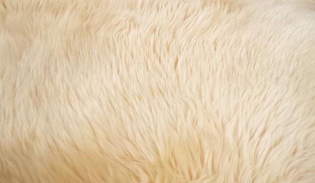 Vidám hangulatú szőnyeg is vásárolható