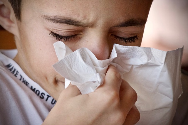macska allergia